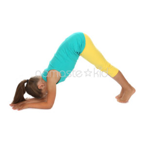 dolphin pose  kids' yoga poses yoga for classrooms