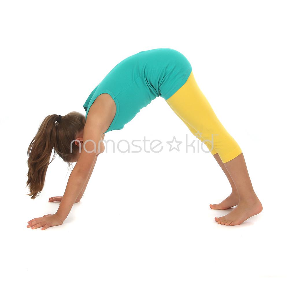 Downward Dog Yoga & Wellness Studio Sunriver Or